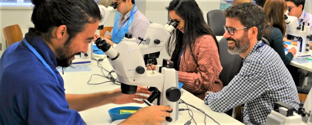 Introduction to Ophthalmic Surgery course - 20 April 2021